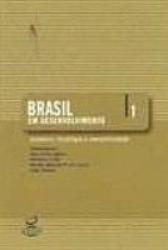 BRASIL EM DESENVOLVIMENTO VOL.1 - ECONOMIA, TECNO...