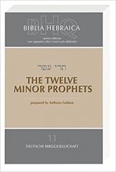 BIBLIA HEBRAICA QUINTA 13 - THE TWELVE MINOR PROPHETS