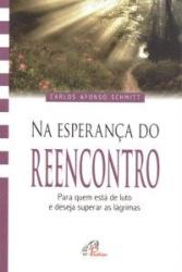 A ESPERACAO DO REENCONTRO