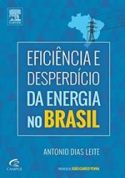 EFICIÊNCIA E DESPERDÍCIO DA ENERGIA NO BRASIL