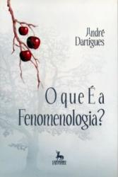 QUE E A FENOMENOLOGIA