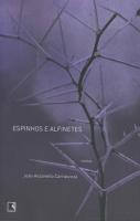 ESPINHOS E ALFINETES