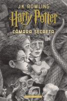 HARRY POTTER E A CÂMARA SECRETA (CAPA DURA) - EDIÇÃO COMEMORATIVA DOS 20 ANOS DA COLEÇÃO HARRY POTTER