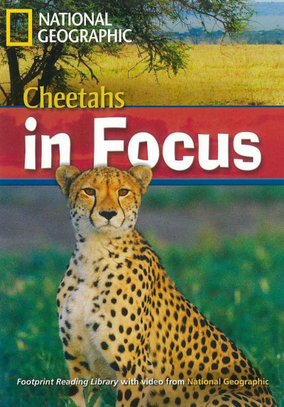 CHEETAHS IN FOCUS - WITH MULTI-ROM - AMERICAN ENGLISH - LEVEL 6 - 2200 B2